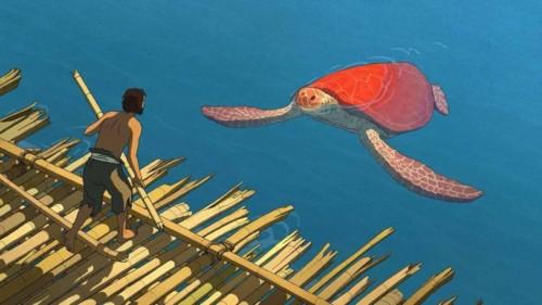 La Tortue rouge dans le film d'animation de Michael Dudok de Wit