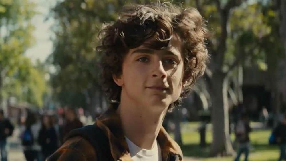 Timothée Chalamet dans Beautiful Boy