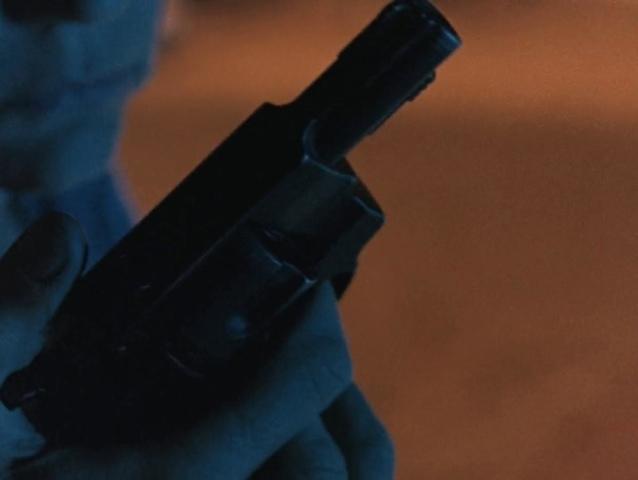 Arme à feu dans River of grass