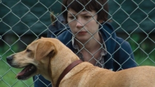 Wendy et son chien dans Wendy et Lucy