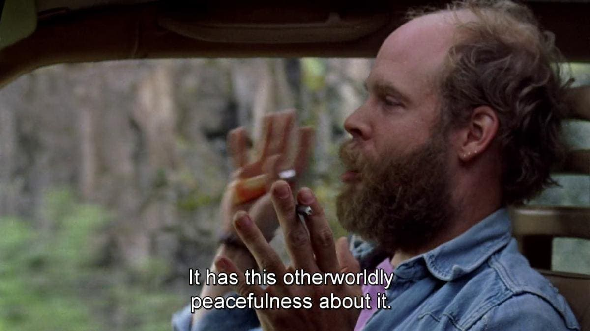 Will Oldham dans Old Joy