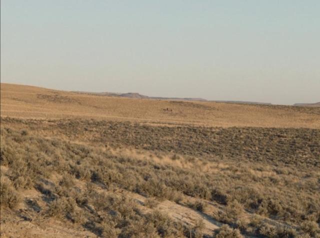 Désert et silhouette à l'horizon dans Meek's Cutoff