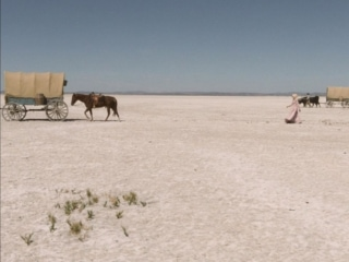 Horizon ouvert sur désert clair dans La dernière Piste