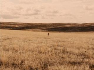 Pierre en équilibre dans le désert de Meek's Cutoff