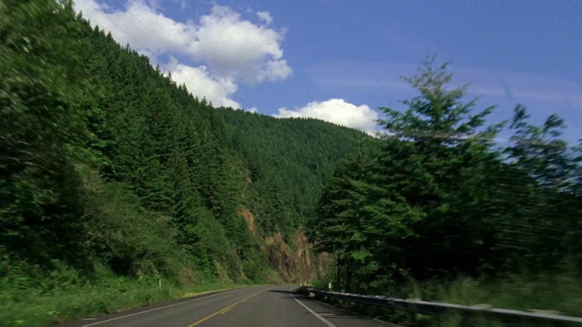 Sur la route dans Old Joy