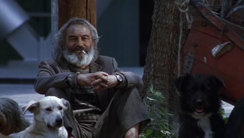 Emilio Echevarría dans Amours chiennes