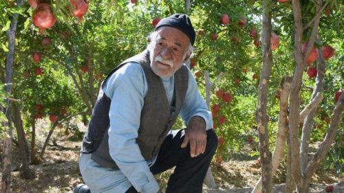 « Feuille de vie »(Barg-e djan), un film de Ebrahim Mokhtari
