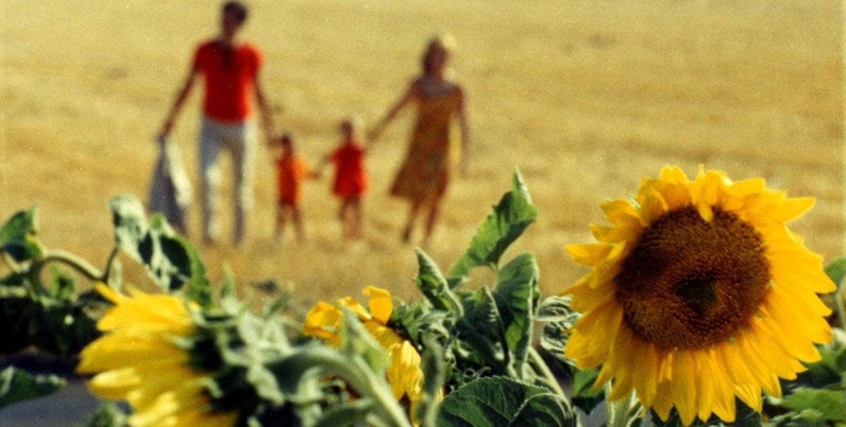 La famille et les tournesols dans Le Bonheur d'Agnès Varda