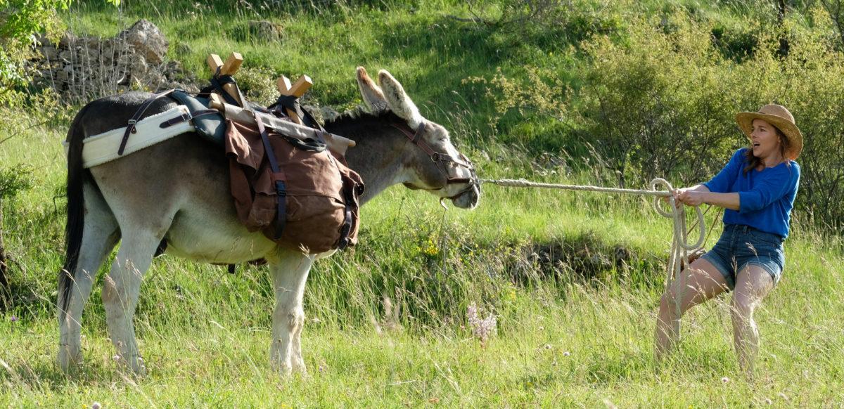 Laure Calamy tirant l'âne Patrick dans Antoinette dans les Cevennes