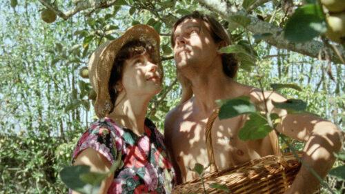 Crista Alfaiate et Carloto Cotta cueillent des fruits dans Journal de Tûoa