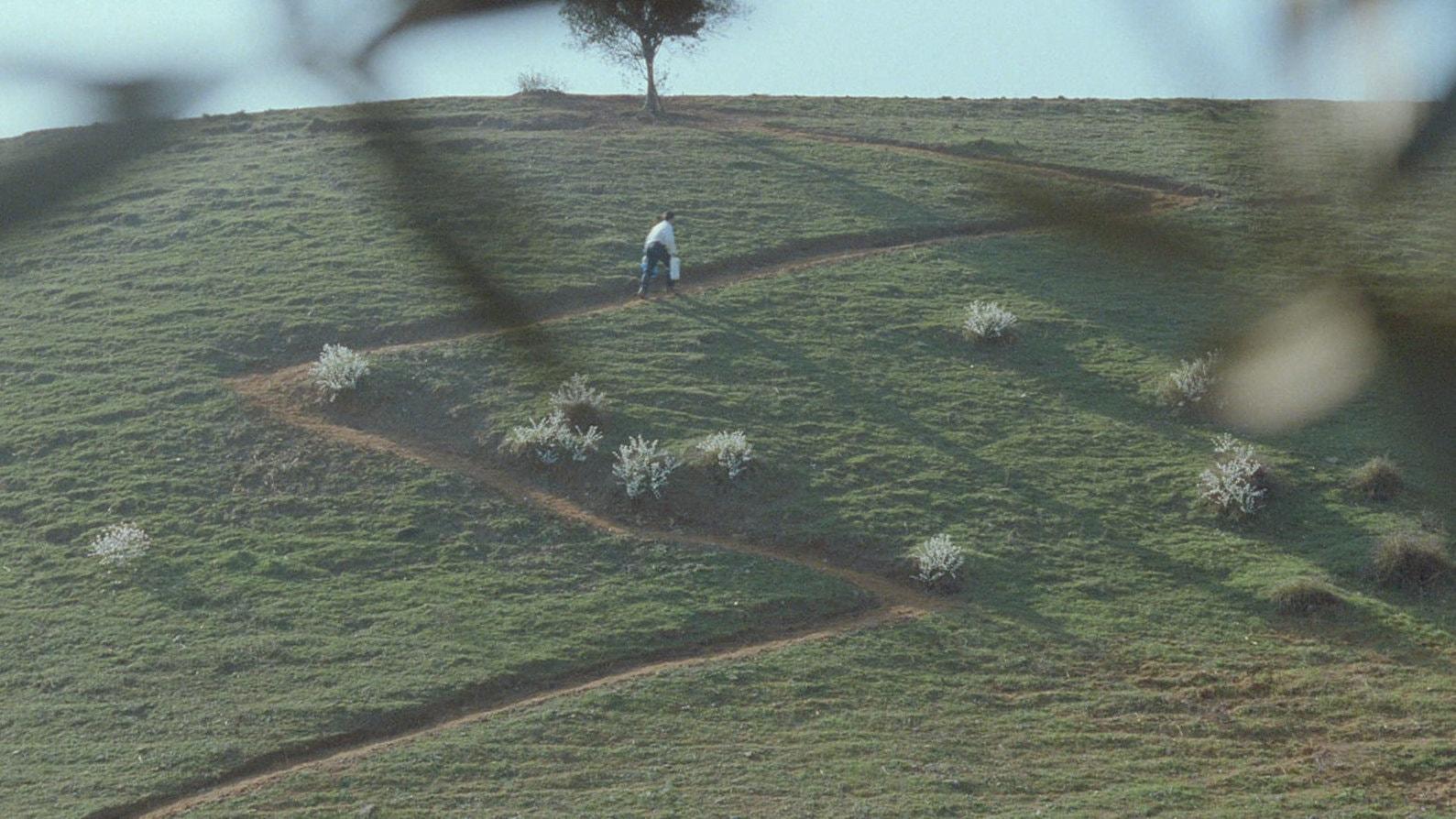 Un enfant monte une colline typique de Kiarostami dans Au travers des oliviers