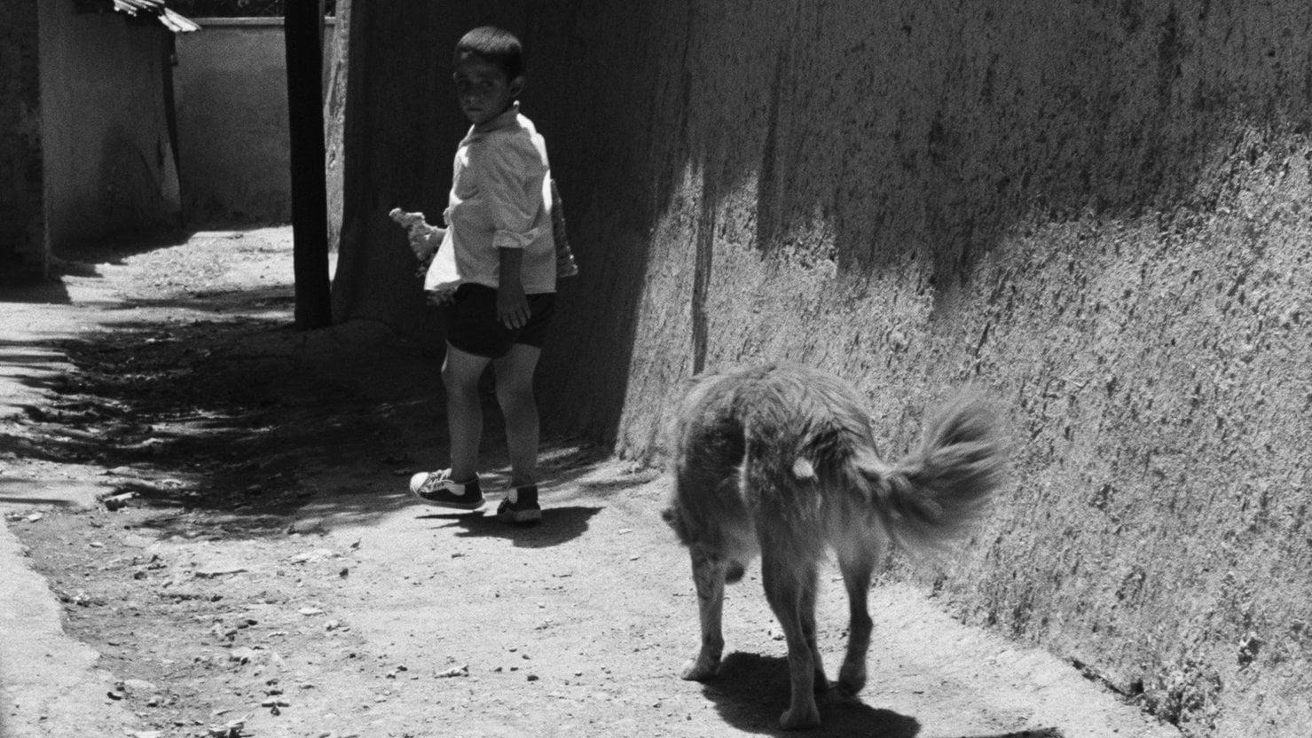 L'enfant et le chien dans Le Pain et la rue